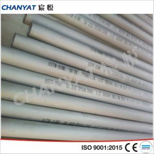 A312 (316LN, 317L, 321) ASME Ss Seamless Pipe & Tube pictures & photos