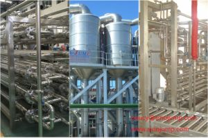 High Speed Tomato Sauce & Ketchup Processing Line/Processing Machine pictures & photos