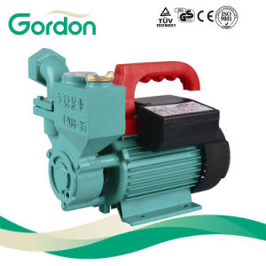 Gardon Electric Copper Wire Clean Water Pump with European Plug pictures & photos