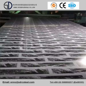 Prime Painting PPGI Steel Coil, Building Material. pictures & photos