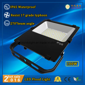 2016 Hot Sale 100W IP65 Waterproof Outdoor Light with Philips LEDs and Meanwell Driver pictures & photos
