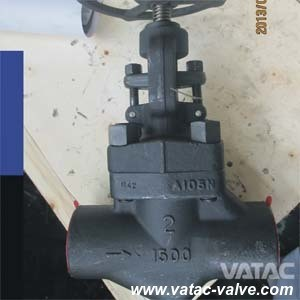 Forged Steel Globe Valve with RF/NPT/Bw Ends pictures & photos