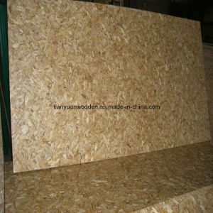1220X2440mm Hot Sale OSB Board for Building Material pictures & photos