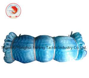 Blue Monofilament Fishing Net pictures & photos