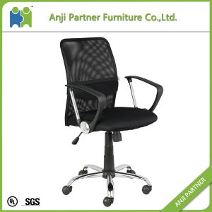 (KAJIKI) Cheap Transparent Fabric Cover Seat Functional Mesh Office Meeting Chairs pictures & photos