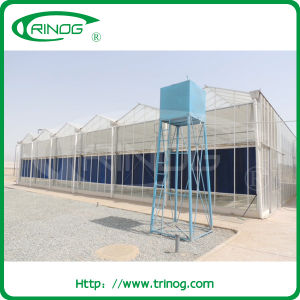 Venlo Glass Greenhouse for agricultural farm pictures & photos