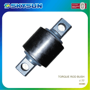 Rubber and Iron Stabilizer Bush 52385-Sr3-000 pictures & photos