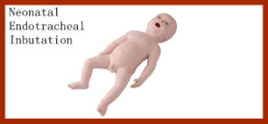 Medical Baby Neonatal Endotracheal Intubation Training Manikin pictures & photos