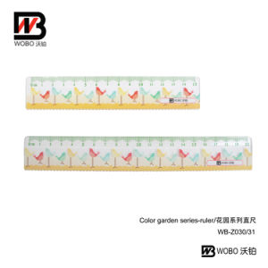 2016 Cartoon Color Straight Plastic Ruler for Office Stationery