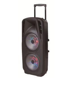 Double 10 Inch Battery Speaker in Professional Audio for DJ Stage F73D pictures & photos