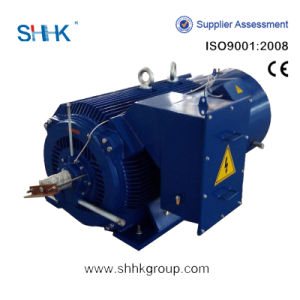 Three-Phase Low Voltage High Output Motor (H400-500) pictures & photos