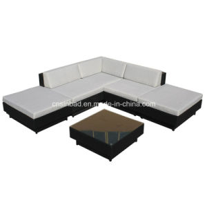 Wicker Furniture Rattan Sofa Set with Aluminum Frame (9509-grey) pictures & photos