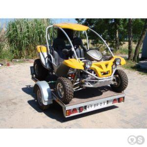 250cc Go Karts/Racing Go Kart Rlg1-250ds