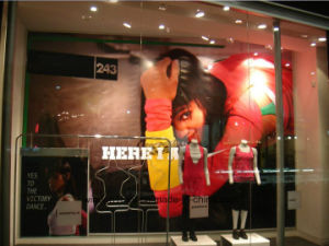 Holographic Transparent Projection Film Glass Film Window Film pictures & photos
