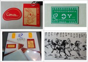 Cattle Ear Tag Namecard Marking Machine/Laser Ear Tag Printing Machine pictures & photos