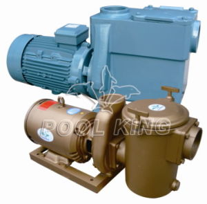 High Performance Residential Swimming Pool Pump pictures & photos