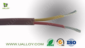 Type K Extension Cable pictures & photos