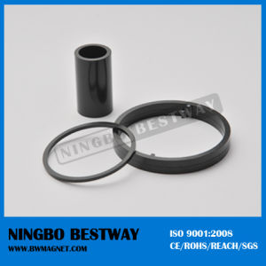 Different Shaped Bonded Ring Magnet pictures & photos