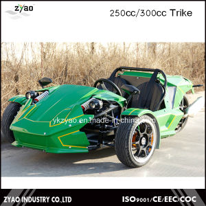 2016 Newest Design Ztr Trike Roadster 250cc EEC Approved pictures & photos
