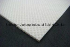 Diamond White PVC Belt Tc25-241FDA