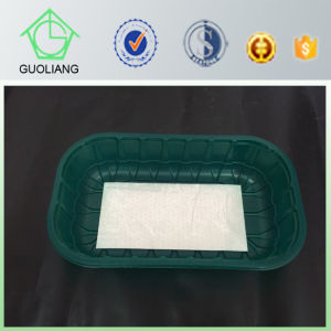 Tray and Box Type Custom Design Cheap Disposable Plastic Food Packaging for Fruit Vegetable Meat pictures & photos