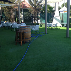 30mm Landscaping Synthetic Fake Grass pictures & photos