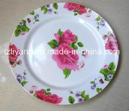 Heat Transfer Printing Film for Plastic Plate pictures & photos