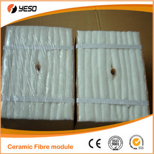 1000 C Ceramic Fiber Module
