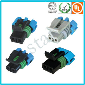 Delphi 2 Pin Car Light Plug Auto Wire Harness Connector pictures & photos