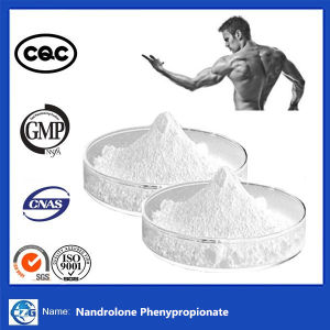 Nandrolone Phenypropionate Powder for Men Bodybuilding pictures & photos
