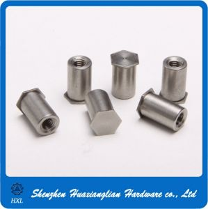 Stainless Steel Flat Closed End Blind Rivet Nut pictures & photos