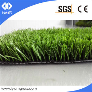 Functional and Colorful Landscape Artificial Turf, Plastic Lawn pictures & photos