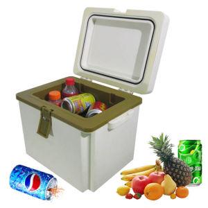 Mini Fishing Cooler Box 10 Liter for Temperature Insulation pictures & photos