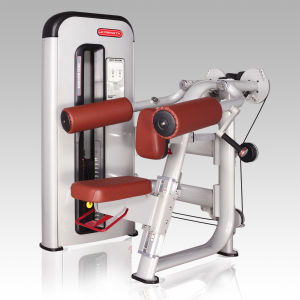 Delts Machine for Gym/Fitness Machine pictures & photos
