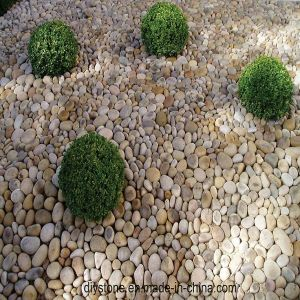 White Loose Pebble Decoration pictures & photos