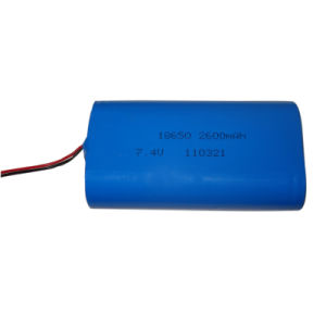 7.4V External Lithium Polymer Battery Pack (2600mAh)