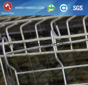 Big Farm Bird Cage for Hot Sale pictures & photos