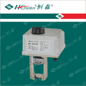 Df/Q-Hc (HD) Series Honeywell Actuator pictures & photos