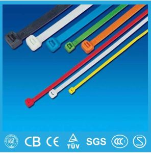Self-Locking Plastic Cable Tie (Nylon cable tie manufacturer) Wholesale in China White Color pictures & photos