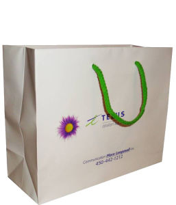 Paper Handle Shopping Bags Wholesale with Cheaper Price pictures & photos