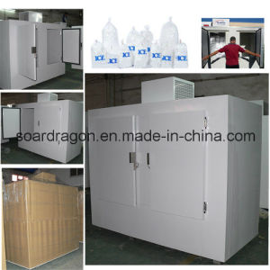 Vertical Bagged Ice Freezer Storage with Double Doors pictures & photos