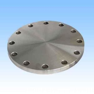 ANSI B16.5 Class 300 317 Forged Stainless Blind Flanges pictures & photos