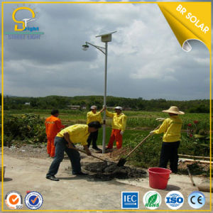 8m 80W LED Light with Solar Panel pictures & photos