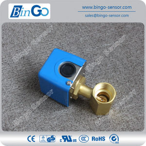 Brass Paddle Type Flow Switch pictures & photos