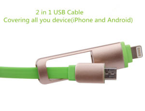 Newest Retractable 2 in 1 Unremovable USB Cable (LCCB-049) pictures & photos