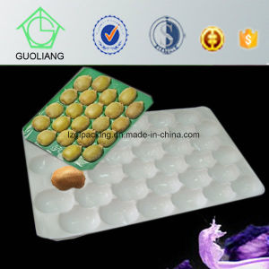Promotion Price High Grade Guoliang PP Plastic Fruit Trays for Fresh Kiwi Packaging pictures & photos