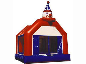 Commercial Inflatable Bouncer Combos