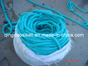Fish Net Float Rope pictures & photos