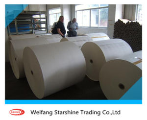 Two-Sided Unoated Offset Paper for Calendar Printing (670*870mm) pictures & photos