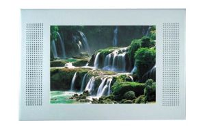 17inch LCD Ad Screen Player With Wall Mounting (SY-017)